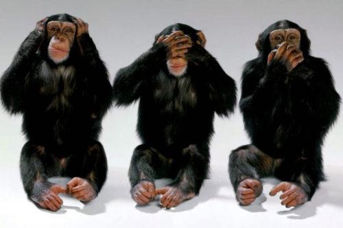 Three Wise Monkeys some ikke hører, ser eller taler