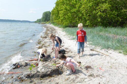 Børn bygger sandslot ved Hagenør sommeren 2012. Med hegn intakt Schousboe