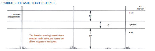 Ideal Wildlife fence 2